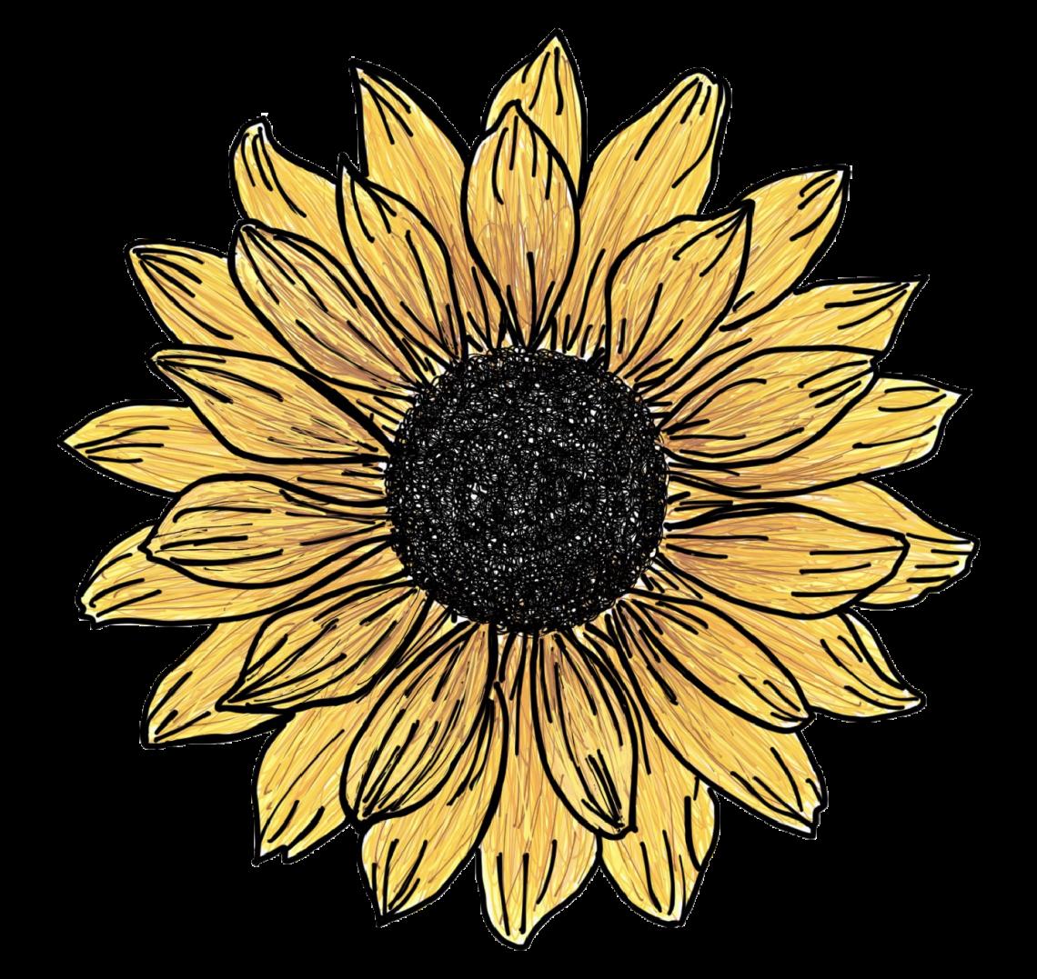 Thesunfloweradventures logo .jpg